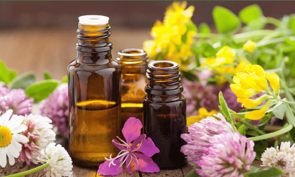 Remédios naturais para TPM: receitas para aliviar sintomas